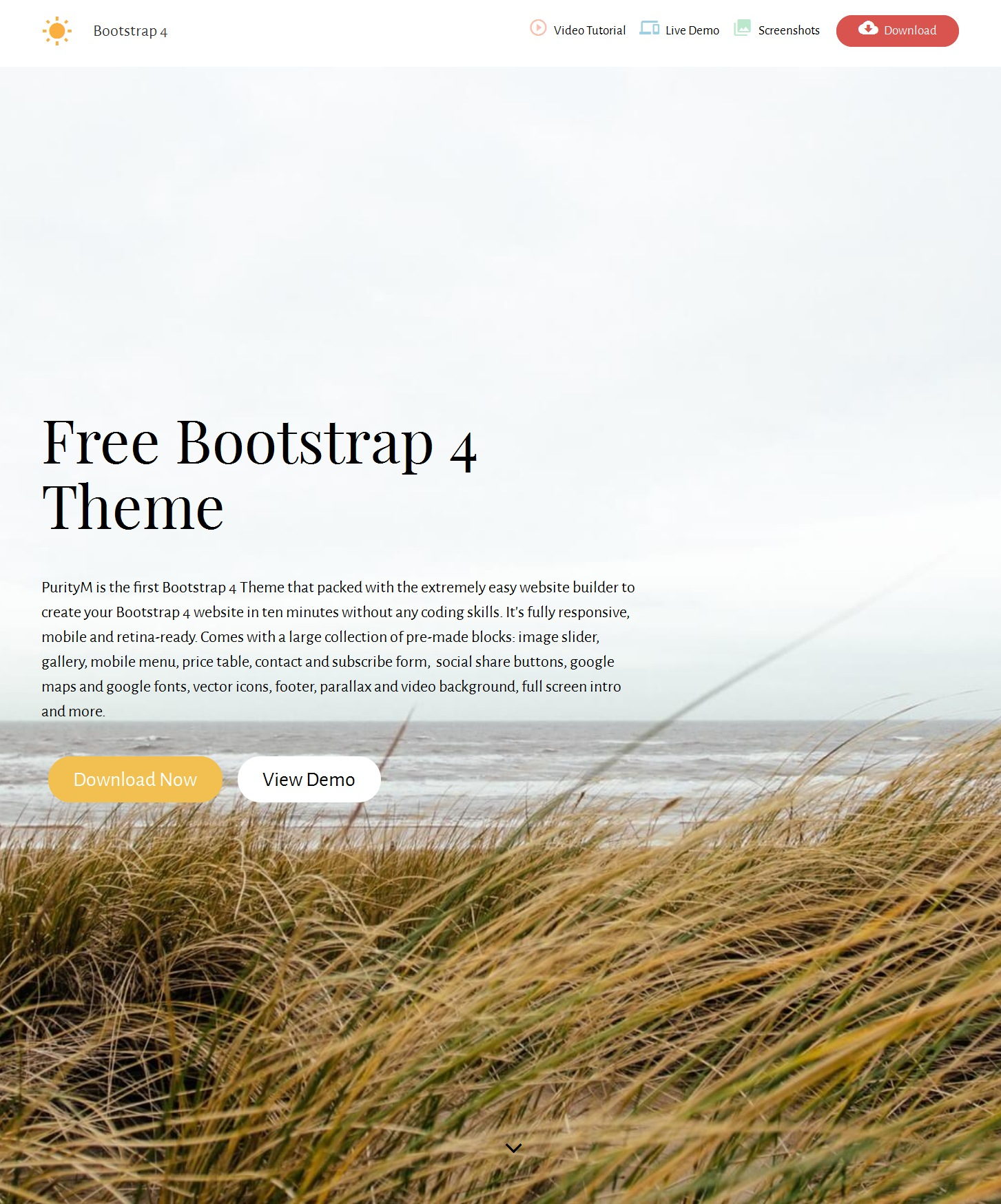 HTML5 Bootstrap Video Theme