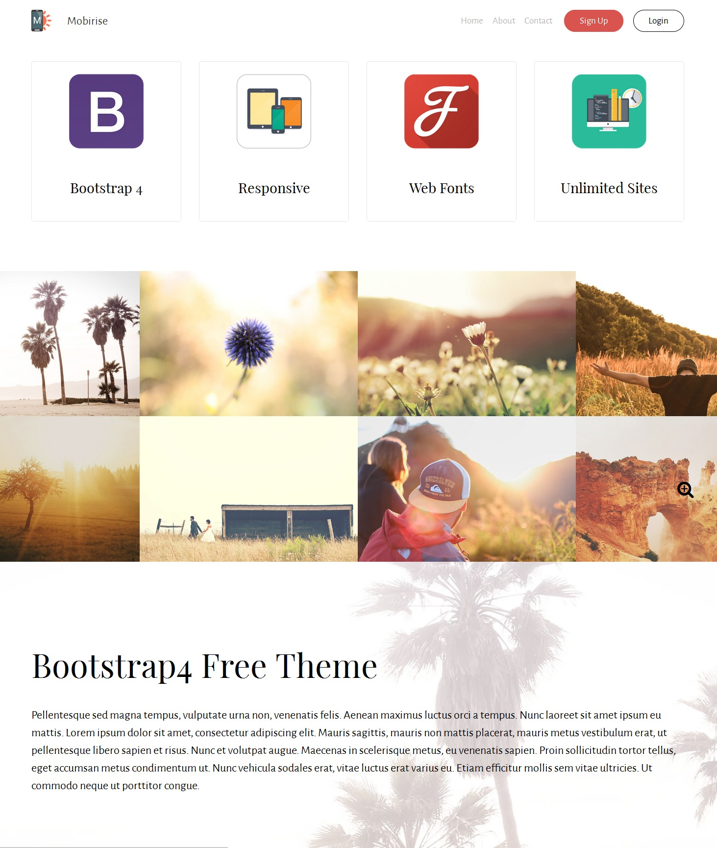 CSS3 Bootstrap App Theme