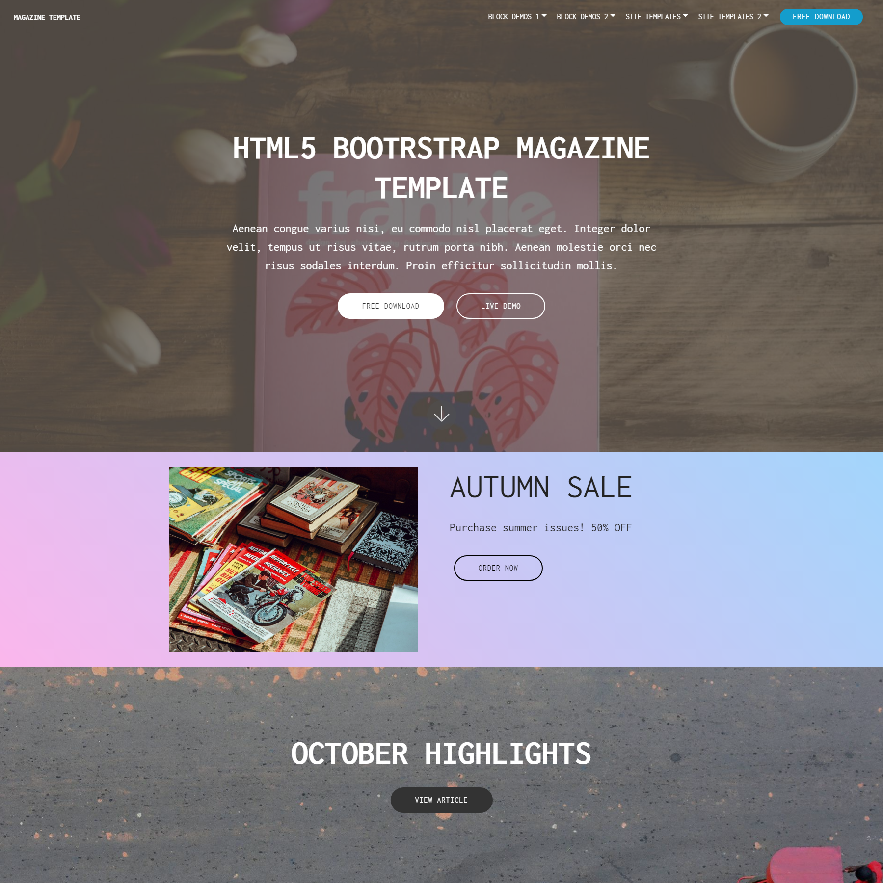 Free Download Bootstrap Magazine Templates