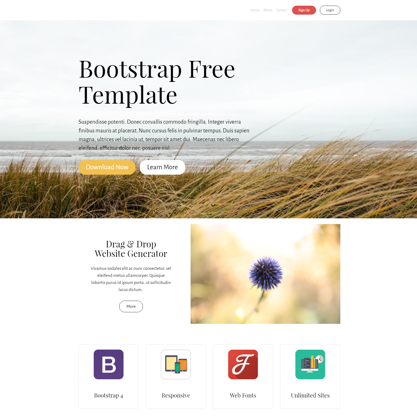 Free Download Bootstrap PurityM Themes